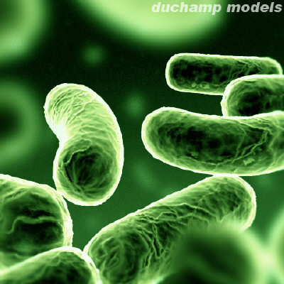 bacterias verdes luminosas-internet